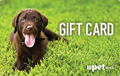Pet Stock gift card purchase