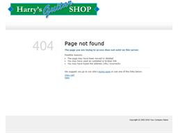 Harry's Guitar Shop shopping